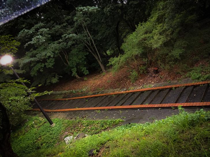 植物園と動物園を繋ぐ階段