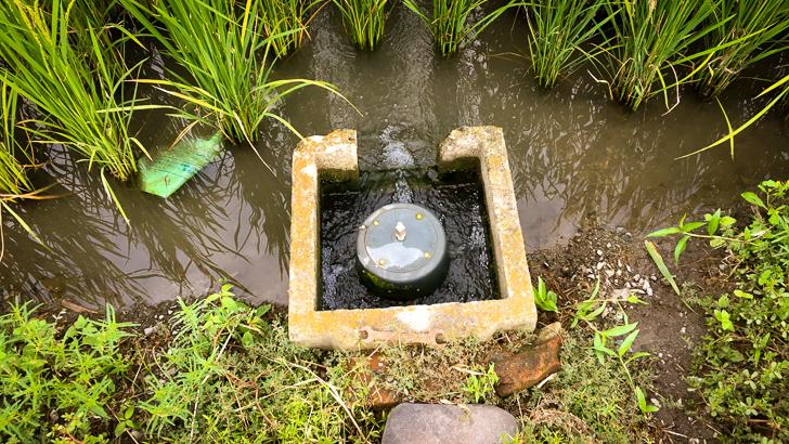 田んぼに良くある「止水栓」