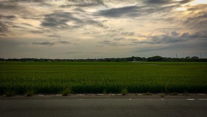 空と田んぼと道路