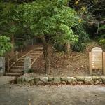 お勧めの森散歩コース「平和南緑地」を紹介