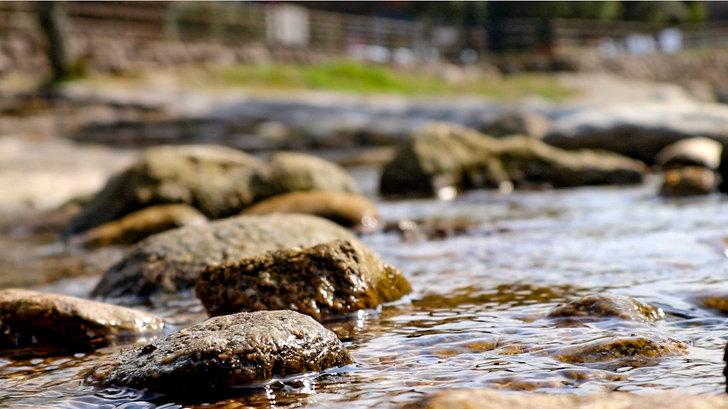 【那珂川】水の音が心地良い「中ノ島公園」を散策