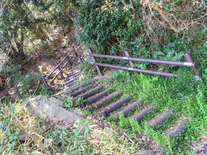 傾斜がきつそうな階段を発見。これは昇るしかない