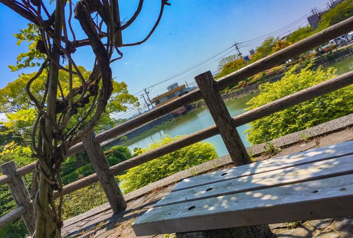 展望スペース ベンチからの景色
