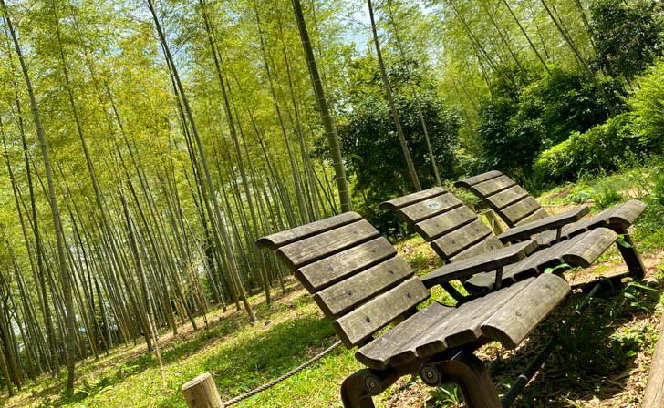 竹林エリアのベンチで休息