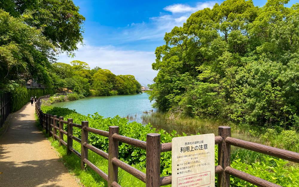 【干隈】緑と湖の癒しスポット「西南杜の湖畔公園」をゆったり散歩