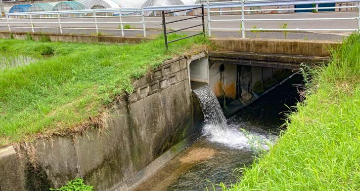 水田から排水される水の音が心地良い