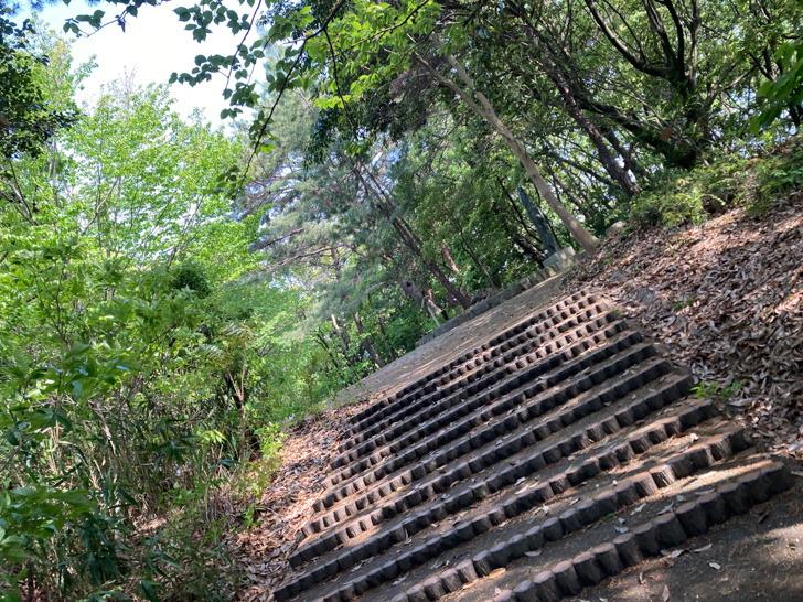 頂上付近の階段