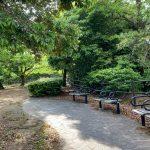 【穴場】夜景が見える小さな公園「多賀北緑地」で一休み【高宮・多賀】