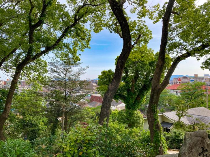 木々の隙間から見る福岡市