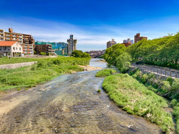 那珂川を見渡せる(こっちは東側)