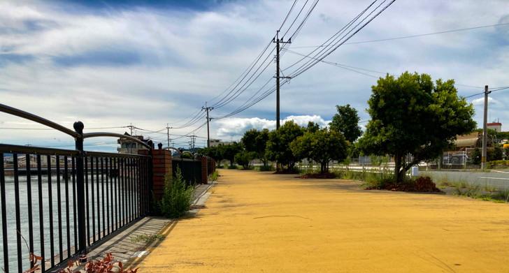 【大牟田市西港町1丁目】なにやらレトロな雰囲気の場所【諏訪川橋】: 黄色い地面と並木