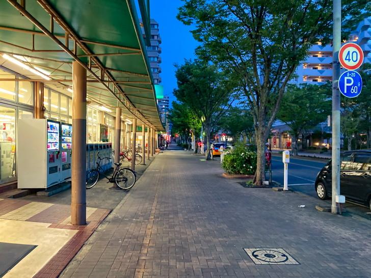 【長住4丁目】団地と、商店が立ち並ぶ落ち着いた通り【散歩レポート】 「サニー 長住店」前の並木道