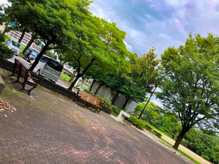 【南区】那珂川の濁流を楽しめる「那珂川河畔公園」を散策 駐車場横のちょっとした広場(奥側が駐車場)